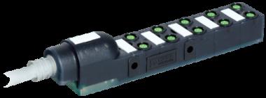 Exact8, 10xM8, 4-pol., sortie câble